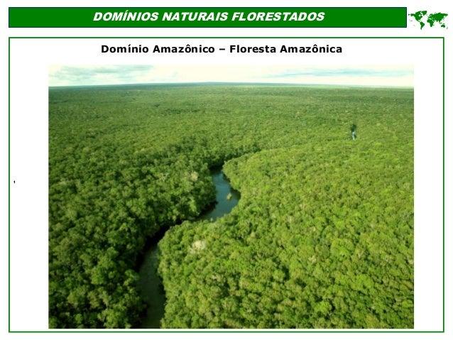 ' DOMÍNIOS NATURAIS FLORESTADOS  Domínio Amazônico – Floresta Amazônica
