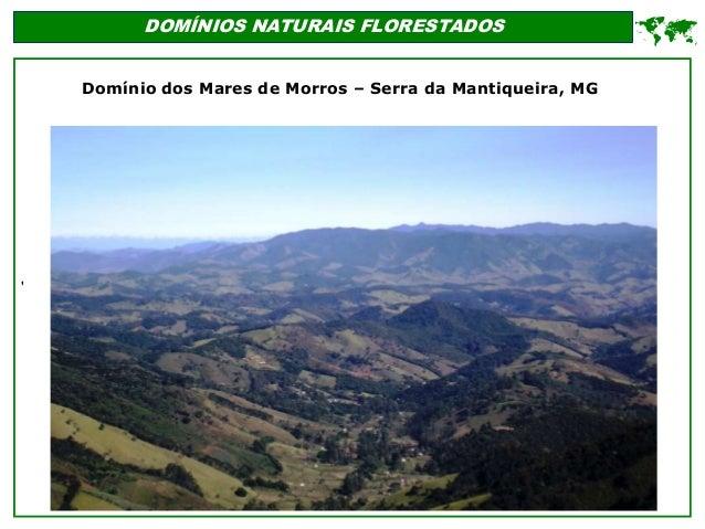 ' DOMÍNIOS NATURAIS FLORESTADOS  Domínio dos Mares de Morros – Serra da Mantiqueira, MG