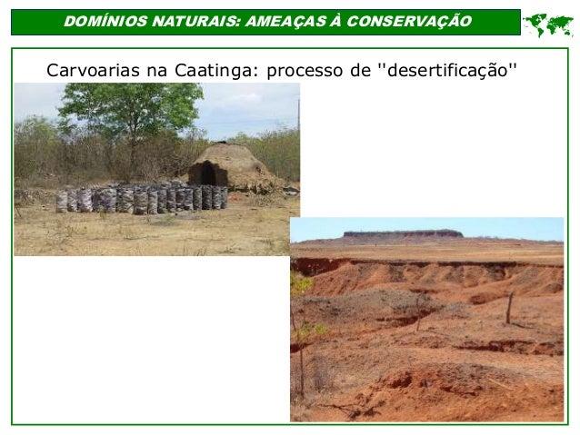 ' DOMÍNIOS NATURAIS: AMEAÇAS À CONSERVAÇÃO  Carvoarias na Caatinga: processo de ''desertificação''