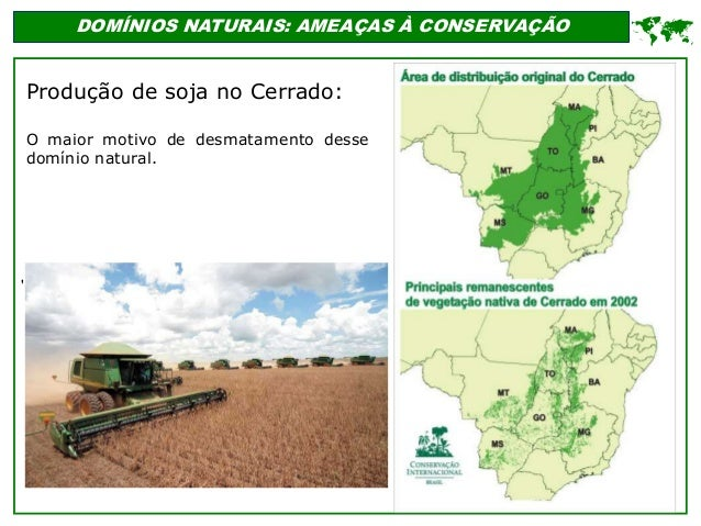 ' DOMÍNIOS NATURAIS: AMEAÇAS À CONSERVAÇÃO  Produção de soja no Cerrado: O maior motivo de desmatamento desse domínio nat...