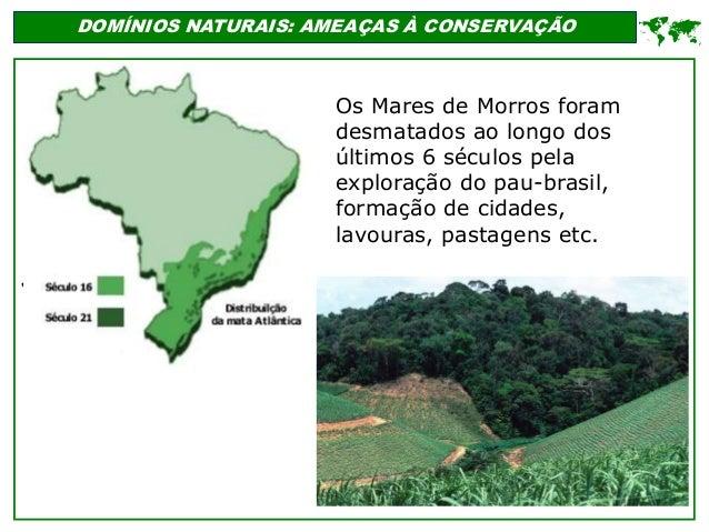 ' DOMÍNIOS NATURAIS: AMEAÇAS À CONSERVAÇÃO  Os Mares de Morros foram desmatados ao longo dos últimos 6 séculos pela explo...