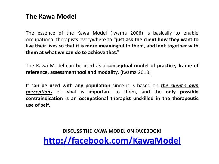 Occupational Therapy (Geriatric) Kawa Model Case