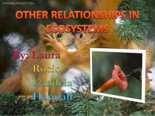 the idea of mutualism between animals Mutualism relationship is seen in all living organisms including human beings, animals, birds, plants and other microorganisms like bacteria, virus, and fungi mutualism is a sort of symbiosis mutualism is a type of relationship between the host and a symbiont, where both organisms benefit and no one is harmed.