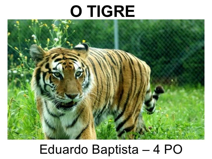 O TIGRE Eduardo Baptista – 4 PO