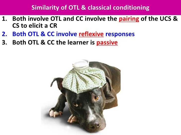 Similarity of OTL & classical conditioning1. Both involve OTL and CC involve the pairing of the UCS &   CS to elicit a CR2...
