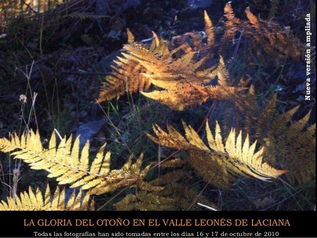 1 LA GLORIA DEL OTOÑO EN EL VALLE LEONÉS DE LACIANA  Todas las fotografías han sido tomadas entre los días 16 y 17 de octu...
