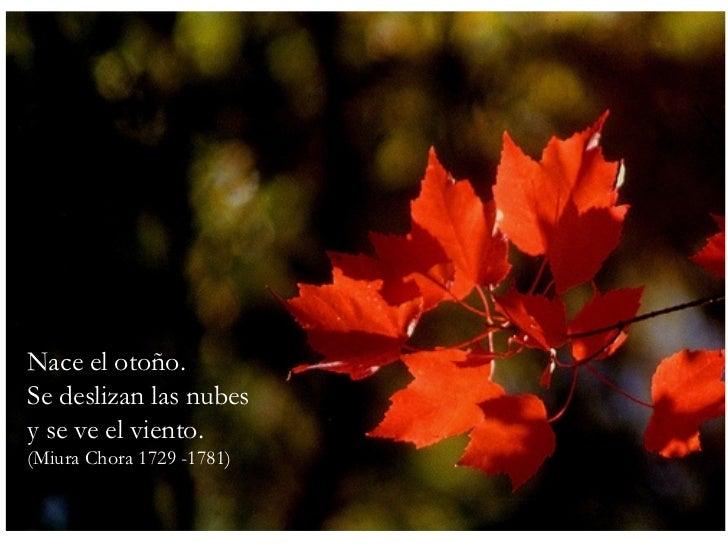 Nace el otoño. Se deslizan las nubes y se ve el viento. (Miura Chora 1729 -1781)