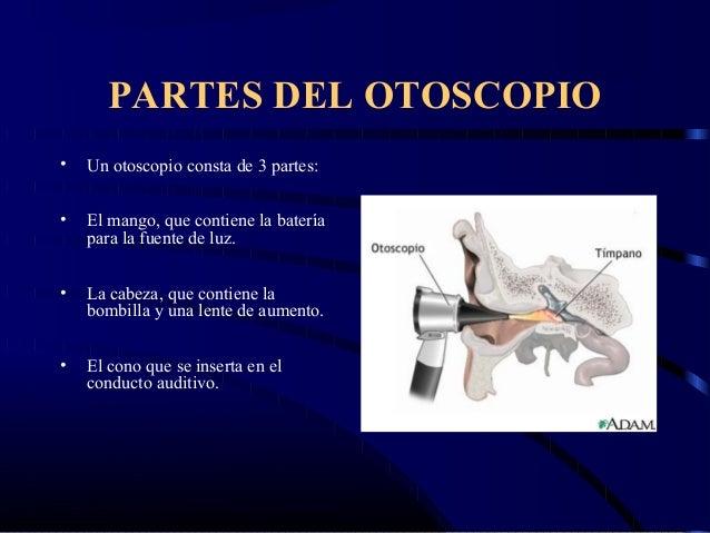 Otoscopia examen de oido for Partes de un vivero forestal