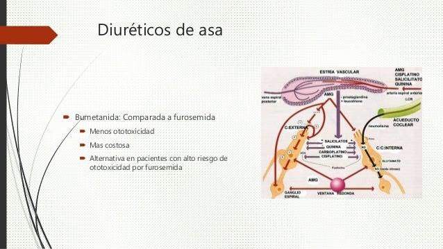 Diuréticos de asa  Bumetanida: Comparada a furosemida  Menos ototoxicidad  Mas costosa  Alternativa en pacientes con a...