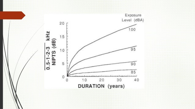 Factores predisponentes Susceptibilidad Presbiacusia Ototoxicidad Vibración