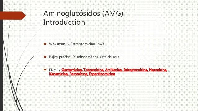 Aminoglucósidos (AMG) Introducción  Waksman  Estreptomicina 1943  Bajos precios Latinoamérica, este de Asia  FDA  Ge...