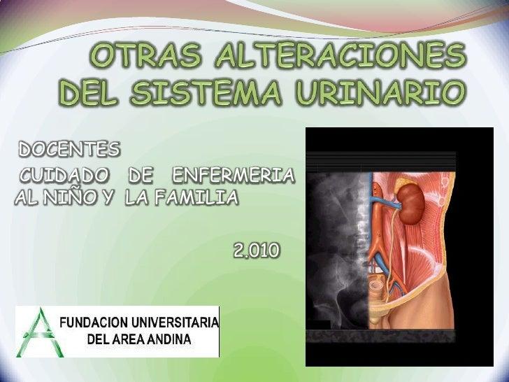 OTRAS ALTERACIONES  DEL SISTEMA URINARIO<br />DOCENTES<br /> CUIDADO DE ENFERMERIA AL NIÑO Y  LA FAMILIA <br />           ...