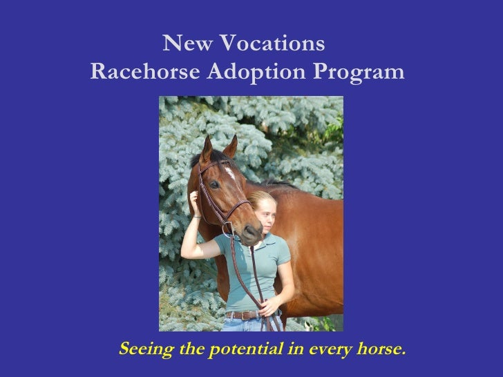 New Vocations  Racehorse Adoption Program Seeing the potential in every horse.