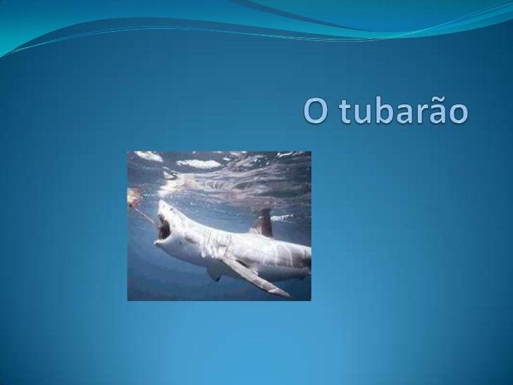 O tubarão<br />