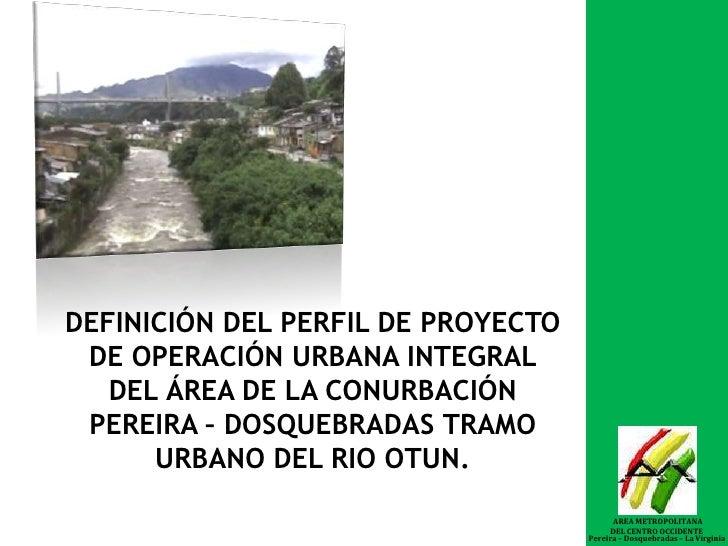 DEFINICIÓN DEL PERFIL DE PROYECTO DE OPERACIÓN URBANA INTEGRAL DEL ÁREA DE LA CONURBACIÓN PEREIRA – DOSQUEBRADAS TRAMO URB...