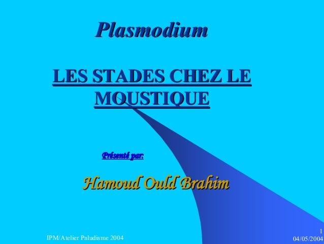 Plasmodium LES STADES CHEZ LE     MOUSTIQUE                  Présenté par:           Hamoud Ould Brahim                   ...
