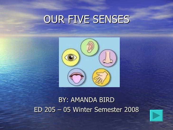 OUR FIVE SENSES <ul><li>BY: AMANDA BIRD </li></ul><ul><li>ED 205 – 05 Winter Semester 2008 </li></ul>