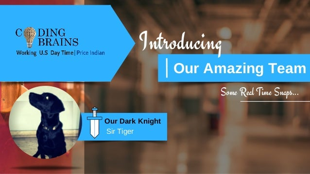 Introducing Our Amazing Team Some Real Time Snaps... Our Dark Knight Sir Tiger