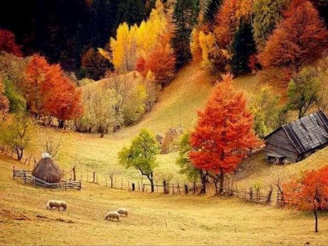 Our autumn (v.m.) Slide 3