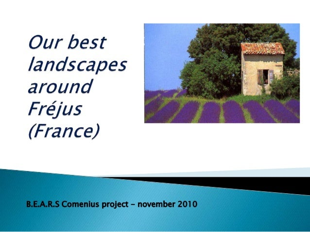 B.E.A.R.S Comenius project - november 2010