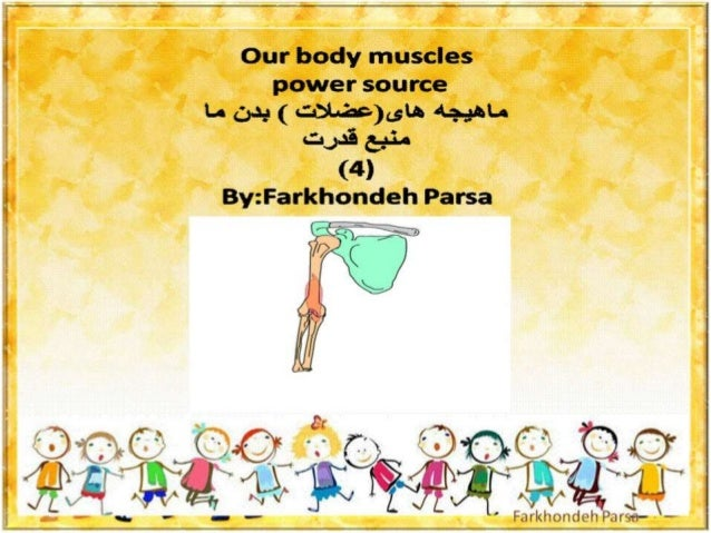 Our body muscles- 4