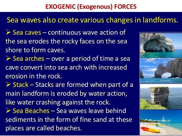 EXOGENIC (Exogenous) FORCES  Sea caves – continuous wave action of the sea erodes the rocky faces on the sea shore to for...