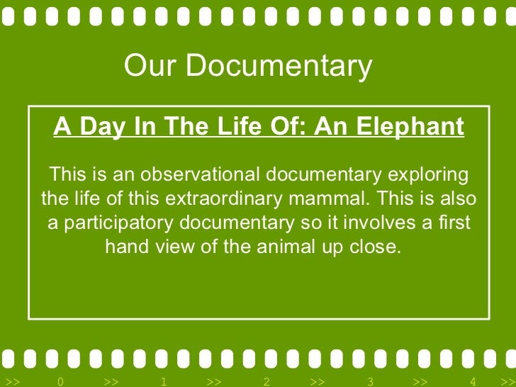 Our Documentary A Day In The Life Of: An Elephant This is an observational documentary exploring the life of this extraord...