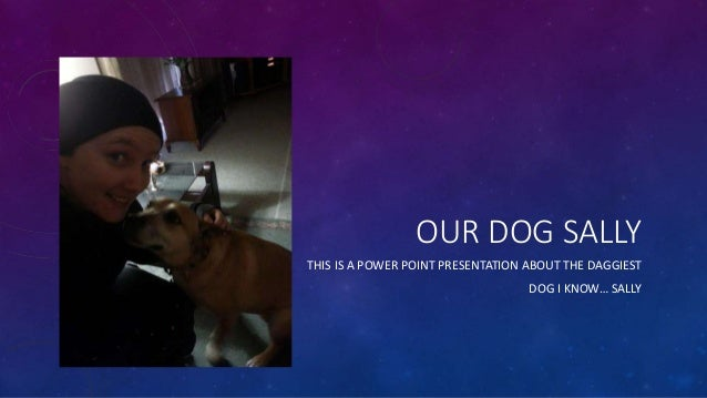 OUR DOG SALLY THIS IS A POWER POINT PRESENTATION ABOUT THE DAGGIEST DOG I KNOW… SALLY