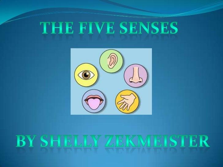  5 Senses Video