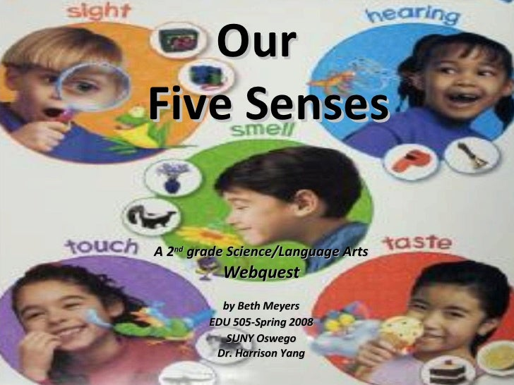 Our   Five Senses A 2 nd  grade Science/Language Arts Webquest  by Beth Meyers EDU 505-Spring 2008 SUNY Oswego Dr. Harriso...