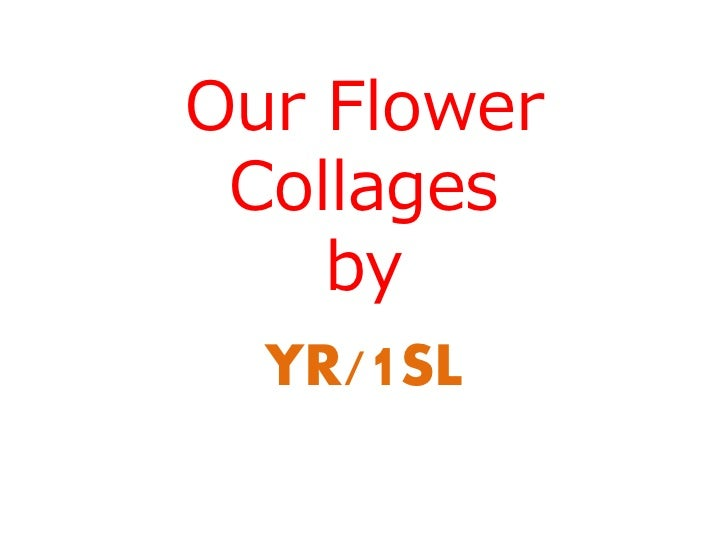 Our Flower Collages    by  YR/1SL