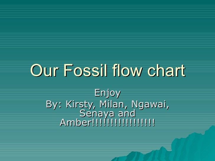 Our Fossil flow chart             Enjoy  By: Kirsty, Milan, Ngawai,         Senaya and    Amber!!!!!!!!!!!!!!!!!