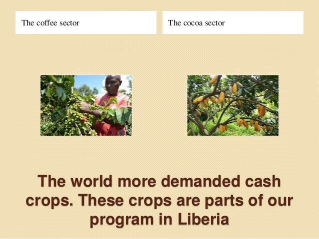 Cocoa Project Proposal