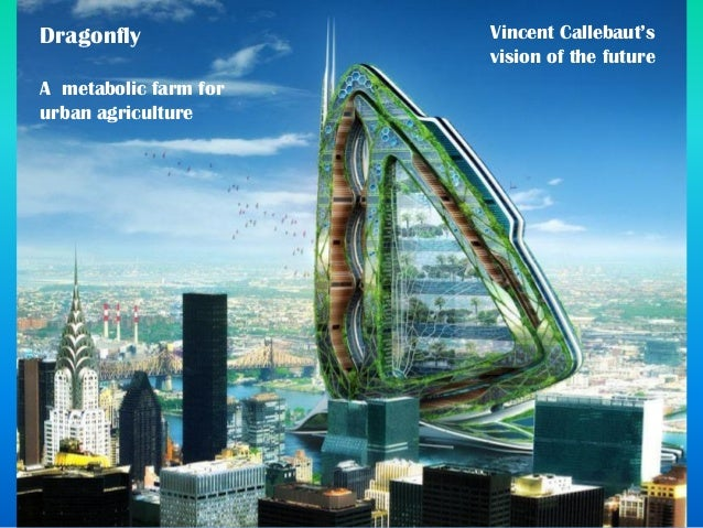 Dragonfly A metabolic farm for urban agriculture Vincent Callebaut's vision of the future