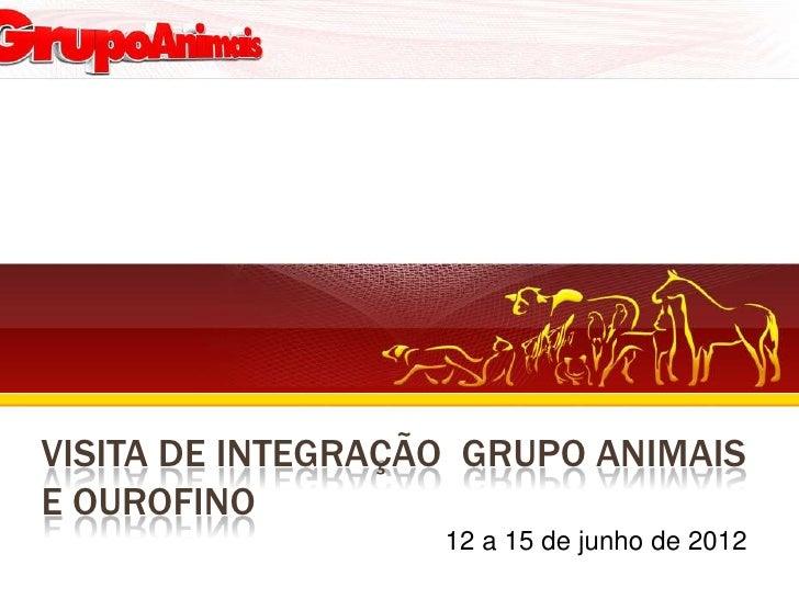 VISITA DE INTEGRAÇÃO GRUPO ANIMAISE OUROFINO                   12 a 15 de junho de 2012