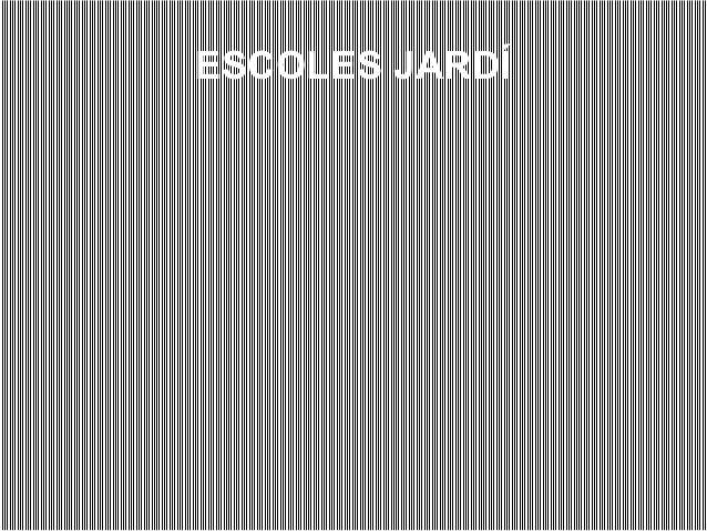ESCOLES JARDÍ
