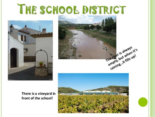 THE SCHOOL DISTRICTThere is a vineyard infront of the school!