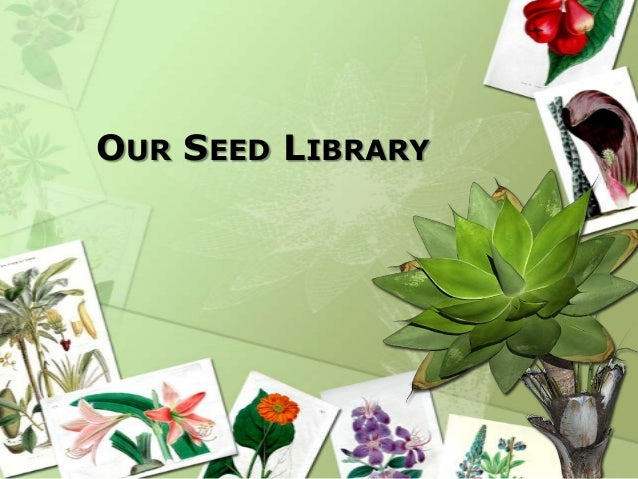 OUR SEED LIBRARY