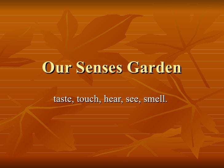 Our Senses Garden taste, touch, hear, see, smell.