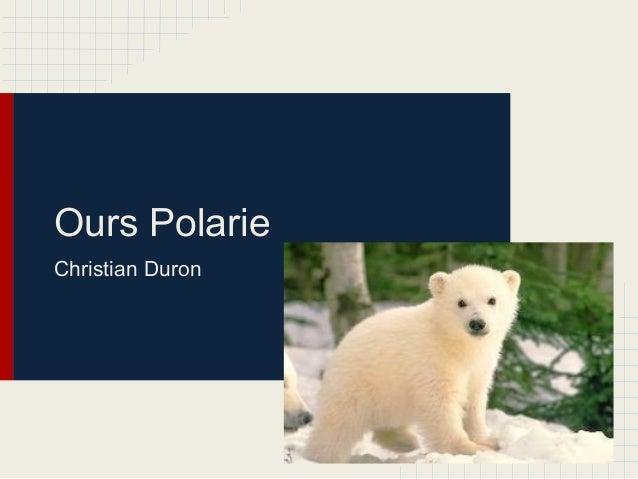 Ours PolarieChristian Duron