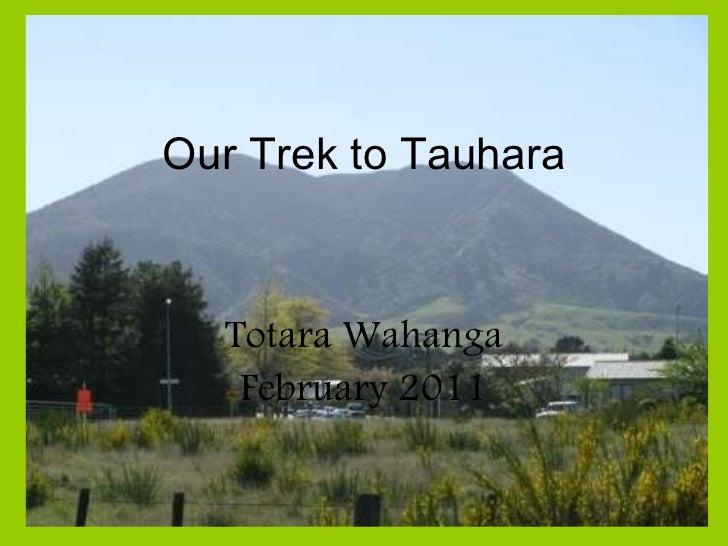 Our Trek to Tauhara Totara Wahanga February 2011