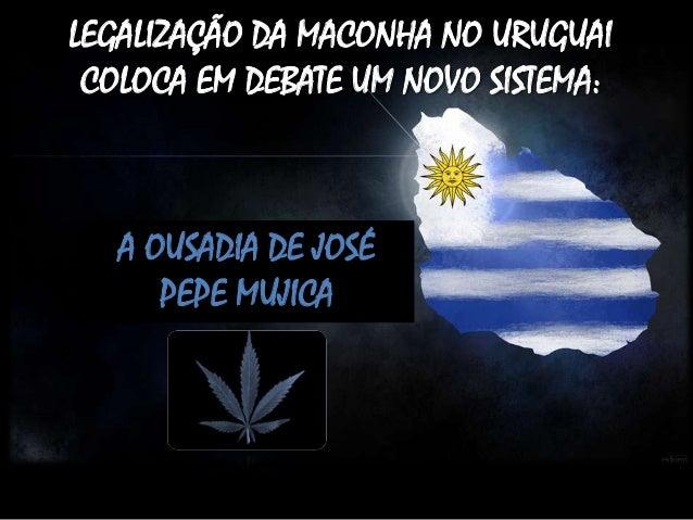 LEGALIZAÇÃO DA MACONHA NO URUGUAI COLOCA EM DEBATE UM NOVO SISTEMA:  A OUSADIA DE JOSÉ PEPE MUJICA