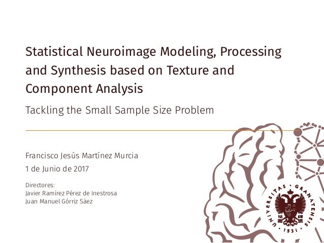 Statistical Neuroimage Modeling, Processing and Synthesis based on Texture and Component Analysis Tackling the Small Sampl...