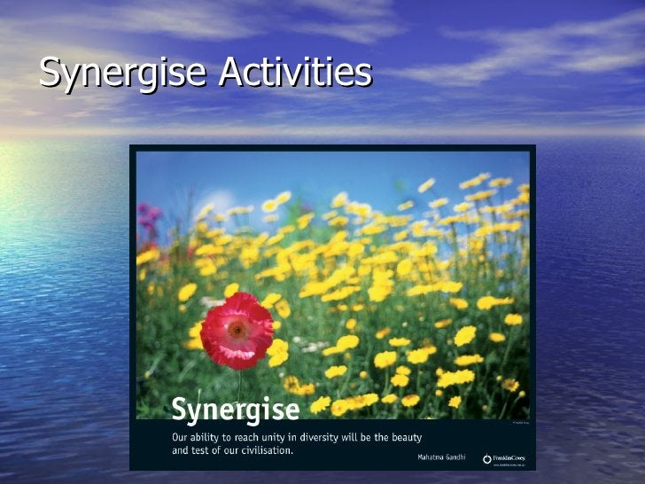 Synergise Activities