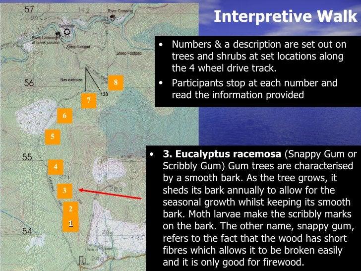 Interpretive Walk <ul><li>1 </li></ul>Interpretive walk 2 3 4 5 6 7 8 <ul><li>Numbers & a description are set out on trees...