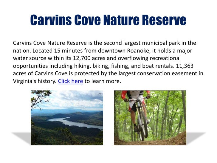 Outdoor amenities of roanoke virginia for Carvins cove fishing