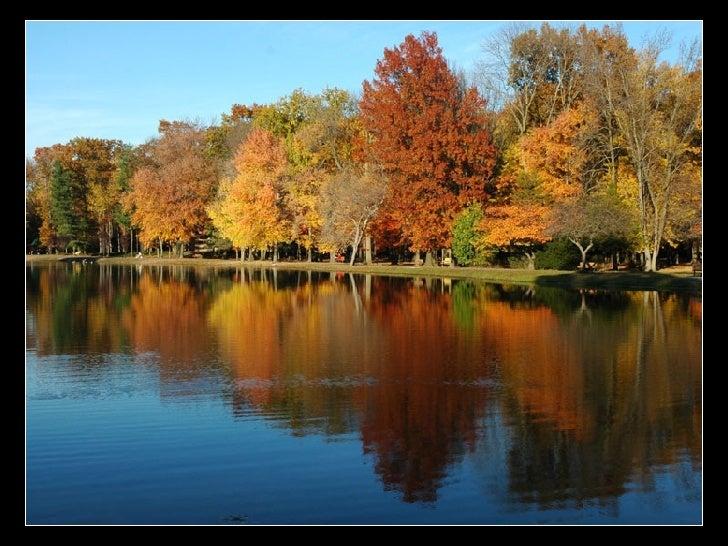 Outono Slide 2
