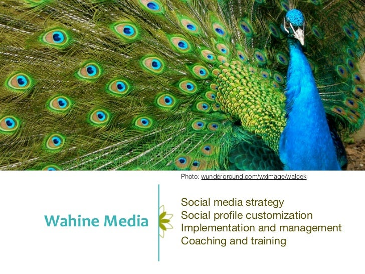 Photo: wunderground.com/wximage/walcek                  Social media strategy                  Social profile customization...