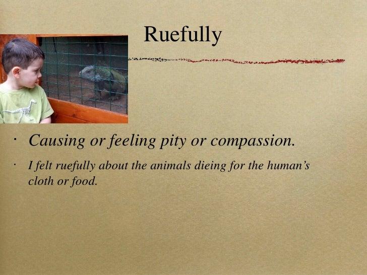 Ruefully <ul><li>Causing or feeling pity or compassion. </li></ul><ul><li>I felt ruefully about the animals dieing for the...