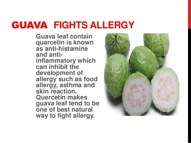 Outstanding health benefits of guava fruit a series of presentation b guava treats constipation ccuart Image collections